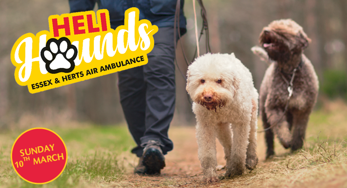 Heli Hounds charity event for Essex & Herts Air Ambulance